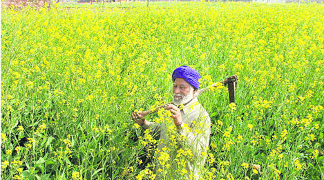 Farmers Health Insurance Scheme launched